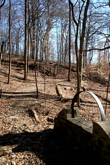 Trail at the Carrie Murray Nature Center